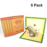 Mouse Glue Trap, 5 Pack Extra Large Rat Glue Traps, NEW VERSION Strongly Adhesive, Best Peanut...