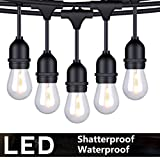 FOXLUX Outdoor LED String Lights - 48FT Shatterproof & Waterproof S14 Heavy-Duty Outdoor Lights - 15...