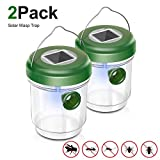 Non-Toxic Wasp Trap Catcher, Reusable Solar Powered Fly Trap with Ultraviolet Light for Trapping...