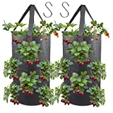 2 Pack Hanging Planter for Strawberry, Fabric Plant Pots for Growing Strawberry with Hooks Included