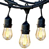 Brightech Ambience Pro - Waterproof LED Outdoor String Lights - Hanging, Dimmable 2W Vintage Edison...