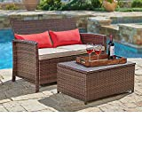 SUNCROWN Outdoor Furniture Wicker Love-seat with Coffee Table (2-Piece Set) Built-in Storage Bin |...
