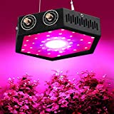 1000W COB LED Grow Light for Indoor Plant, Adjustable Full Spectrum Plant Light Growing Lamps with...