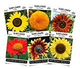 Sow Right Seeds - Sunflower Seed Collection for Planting, Includes six Varieties: Autumn Beauty,...