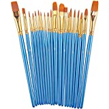 Paint Brush Set by heartybay, 20 pcs Nylon Hair Brushes for Acrylic Oil Watercolor Painting Artist...