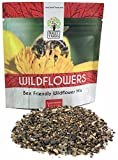 Bee Friendly Wildflower Seed Mix - Bulk 1 Ounce Packet - Over 7,500 Open Pollinated Seeds - Save The...