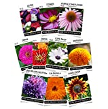 Sow Right Seeds - Flower Seed Garden Collection - Sunflower, Marigold, Zinnia, Cosmos, Daisy,...