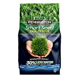 Pennington 100526675 Smart Seed Tall Fescue Grass Seed, 3 LB