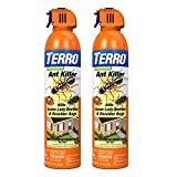 Terro T1700SR 19 oz Outdoor Ant Killer Spray-2 Pack, White