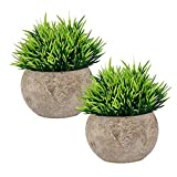 The Bloom Times 2 Pcs Fake Plant for Bathroom/Home Office Decor, Small Artificial Faux Greenery for...