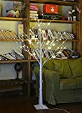 Lightshare 4 Feet Birch Tree, 48 LED Lights, Warm White, for Home, Festival, Party, and Christmas...