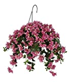 House of Silk Flowers Artificial Orchid Pink Bougainvillea Hanging Basket