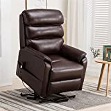 Irene House (Dual Motor) Electric Power Lift Recliner Chair for Elderly Comfortable (Breath...