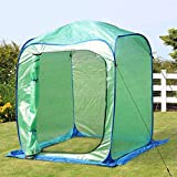PHI VILLA Large Walk-in Pop Up Greenhouse-Small Flower Plant Greenhouse 49'x 49'x 64.9' (Blue)