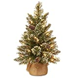 National Tree 2 Foot Glittery Bristle Pine Tree with White Tipped Cones and 15 Battery Operated Warm...