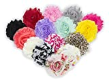 JLIKA (30 pieces) 15 Pairs Shabby Flowers - Chiffon Fabric Roses - 2.5' - Colors as pictured