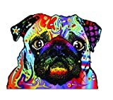 Enjoy It Dean Russo Pug Car Sticker, Outdoor Rated Vinyl Sticker Decal for Windows, Bumpers, Laptops...
