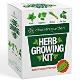 Herb Garden Starter Kit Indoor - DIY Kit for Growing Basil, Cilantro, Parsley, Chives from Seeds -...
