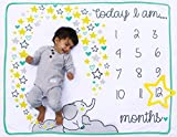 Happily Ever After Baby Monthly Milestone Blanket - for First Year Photography with Frame Star...