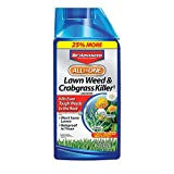 BioAdvanced All-in-One Lawn Weed & Crabgrass Killer 32 oz Concentrate for Dandelions, Crabgrass &...