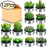 Outee 12 Pcs Cactus Tealight Candles Handmade Delicate Succulent Cactus Candles Flameless...