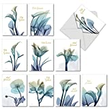 10 Boxed 'Blooming Expressions' Thank You Sympathy Note Cards w/Envelopes - Assorted Blue Flower...