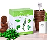Nature's Blossom Herb Garden Kit - 5 Herbs to Grow From Seed - Basil Seeds, Cilantro, Sage, Parsley...
