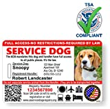 Just 4 Paws Custom Holographic QR Code Service Dog ID Card with Registration to Service Dogs...