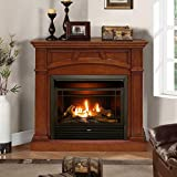 Duluth Forge Dual Fuel Ventless Fireplace-26,000 BTU, Remote Control, Finish Gas Fireplace Heritage...