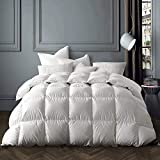 Globon Winter White Goose Down Comforter King Size,Texcote Nano-Treated, 60 OZ, 700 Fill Power, 400...