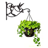 Hanging Plant Hook Hummingbird Cast Iron Decorative Flower Basket Wall Hanging Hooks Bracket Hanger...