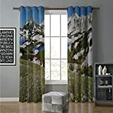 Blackout Curtain for Living Room 108 by 84 Inch Romantic,Spring Bush Beautiful Roses Buds and Petals...