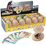 Dig a Dozen Dino Eggs Kit - Break Open 12 Unique Dinosaur Eggs and Discover 12 Cute Dinosaurs -...