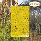 BestTrap 20-Pack Dual-Sided Yellow Sticky Traps Flying Plant Insect Such as Fungus Gnats,...
