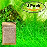 3 Pack Water Plant Seeds Water Grass Seed Tall Seeds Easy Aquatic Live Grow Plants Fish Tank...
