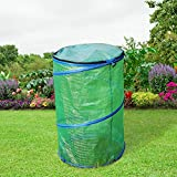 PHI VILLA Outdoor Pop Up Greenhouse-Small Flower Plant Greenhouse 17.7' X 17.7'X 27.5' (Blue)