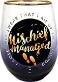Spoontiques Mischief Managed Stemless Glass, 20 ounces,...